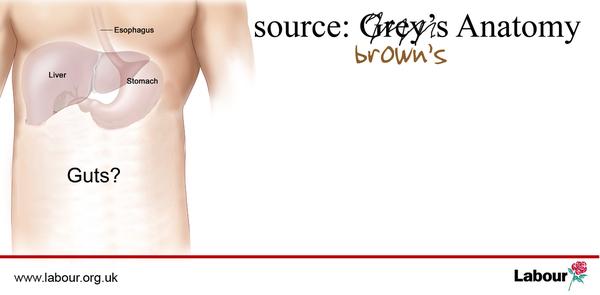 Browns_guts_4